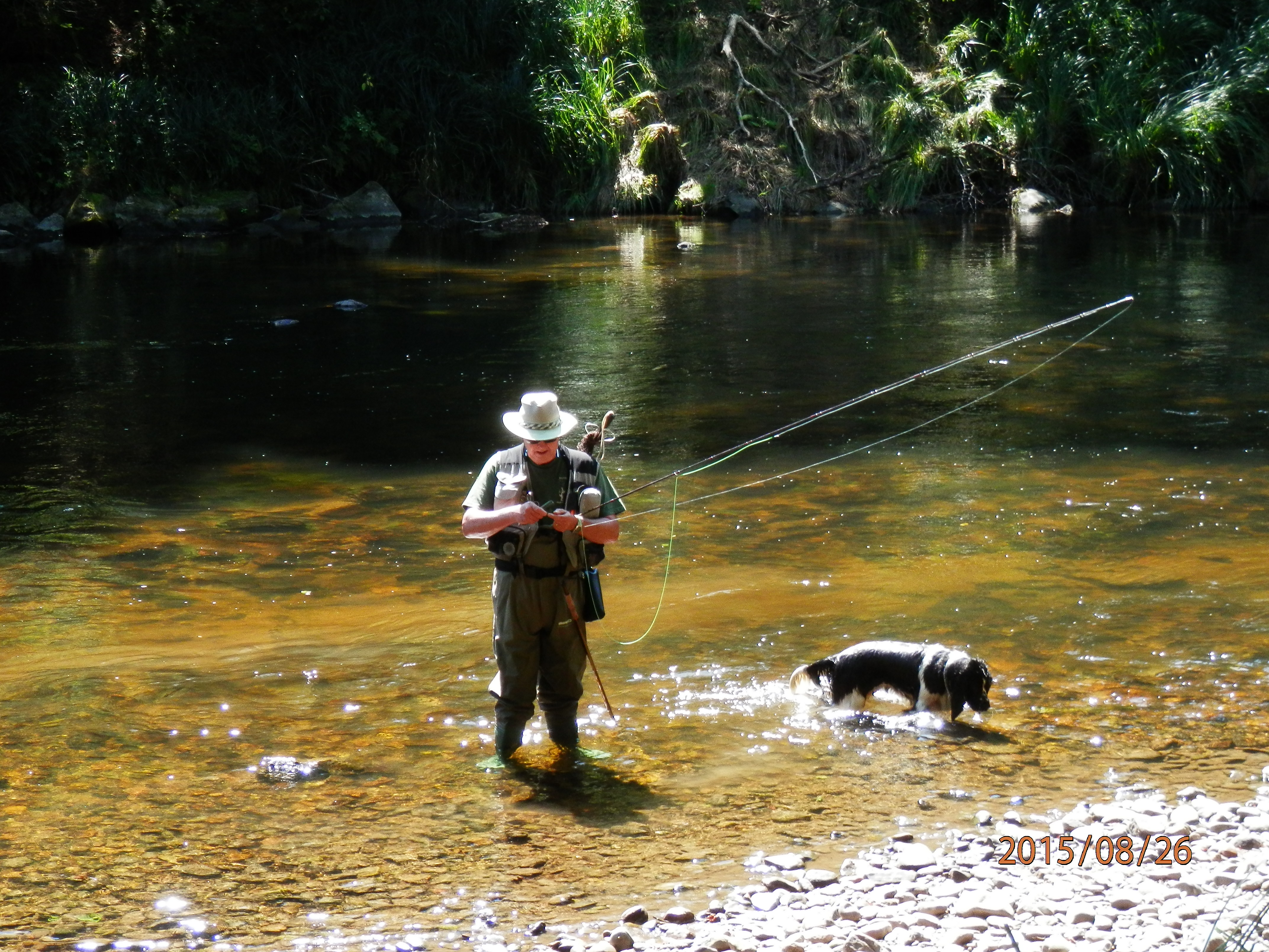 Fly Fishing River Ilz in Germany